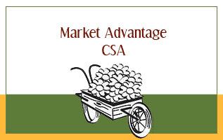 Market Advantage CSA